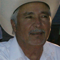 Jose Arnoldo Cerda