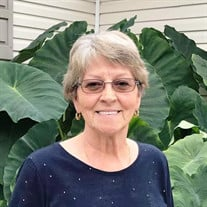 Janet F  Hill Winter Obituary - Visitation & Funeral Information