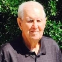 Herbert D Webb