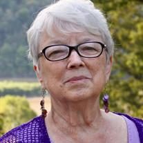 Sue Palmer Nedrow