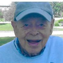 Verne R. Jamieson