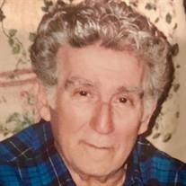 Marcello  A. Zucca