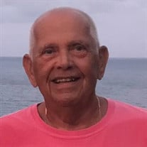 Terry J. Bricker