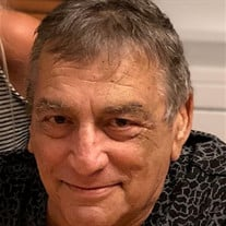 Herbert J. Comello