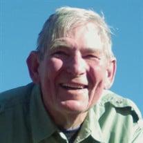 Mr. David  Mathew Hogan