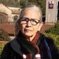 Sylvia M Ojeda