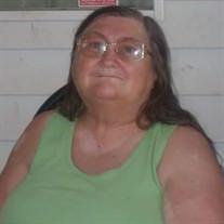 Carol Joy  Steinmetz