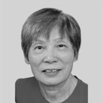 Jin Y. Zhenglin
