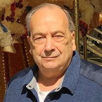 Domenic A. Petruzzelli