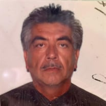 Francisco Soto Navarro