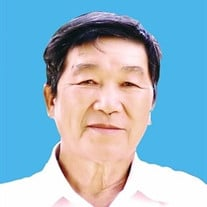 Mr. Long Huy Nguyen