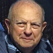 Dr. Donald M. Mogerman