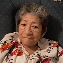 Mrs. Vicenta Fernandez Vasquez