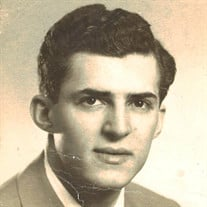 Mr. John F. Papaleo