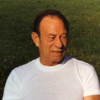 ROBERT N. GARNER