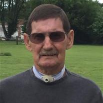Peter L Moseley