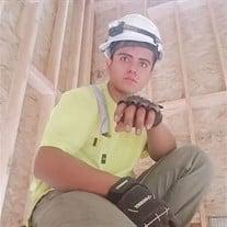 Carlos Alfredo Palacios-Aviles