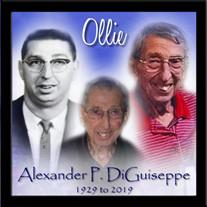 Mr. Alexander P. DiGuiseppe