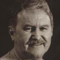 Dr. H.  Wayne Mohorn Sr.