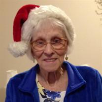 Janet E. Murray