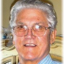 Joe D Perry