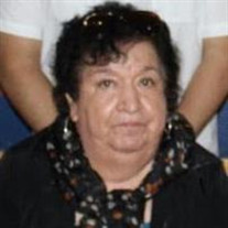 Estela Molina