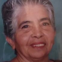 Ernestina Lopez Valdez-Hernandez