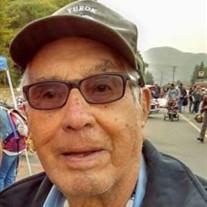 Irving D. Wilder