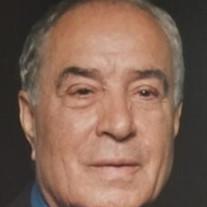 Reza Razmi
