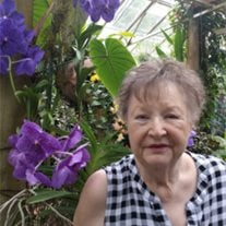 Shirley Ann Looney