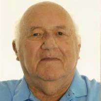 Werner C. Vieh