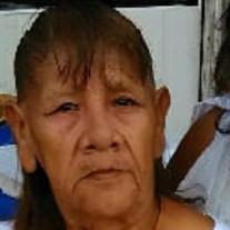 Yolanda V.  Lopez