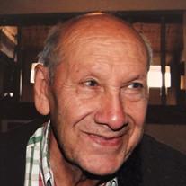 Mehdi Shamsaei