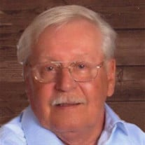 Peter Patrick Ward, 73, Savannah, TN