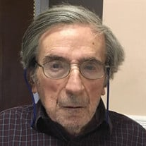 Alfonso Morgillo