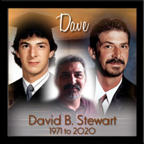 David B. Stewart
