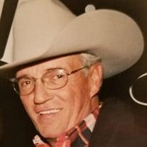 Mr. Sidney Phillip Accardo Jr.