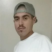 Armando Loza Plascencia