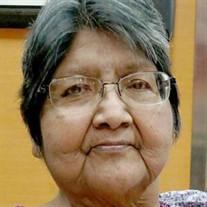 Elizabeth Ann  Ortega