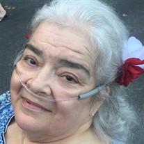 Diane Lee Alquicira