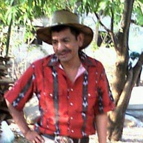 Maximino Torres Tolentino