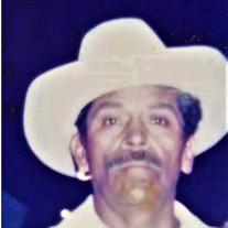 Mr. Dario López  Rodríguez