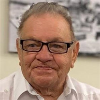 Mauro C. Rosa