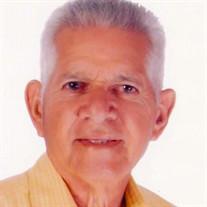 Raul  A.  Santiago Delgado