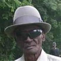 Mr. L C Lewis