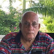 Mr. Alvin P. de Lande