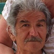 Dominic Pironti