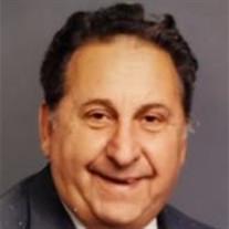 Riccardo L DeLillo
