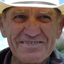 David F. Hollings