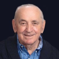 Mr. Radomir Arsenijevic